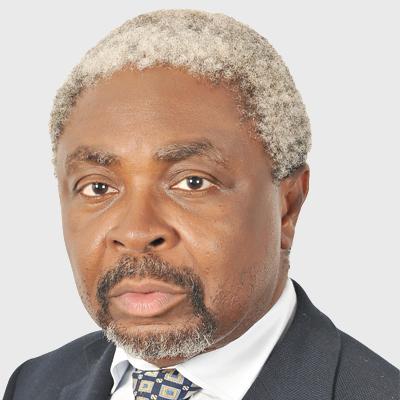 Emeka Ndu